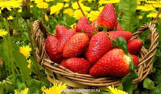 Уход за кожей летом: фруктовые и овощные маски