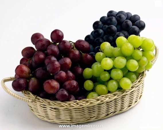 Виноградная маска. Перемешайте в блендере виноград и 2 ч.л. муки. Смесь подержите 10 минут и смойте теплой водой.