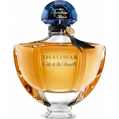 zapakh oseni luchshie parfyumy dlya osennego sezona 2